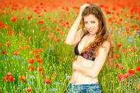 A Day at the Poppyfield