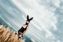 Bunny-Mask-8