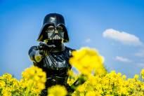 Darth Vader masked gir