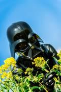 Darth Vader masked girl
