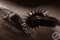 Spiked Wheel (3).jpg