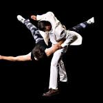 Martial Arts Photos Incognito Stunts